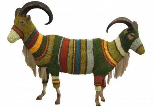 8216554 Crochet Artist Elaine Bradford