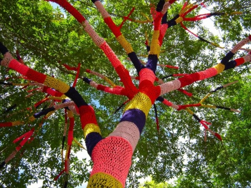Tree Cozy Cleveland 2 500x375 Found Art Crochet Artist Melissa Maddonni Haims