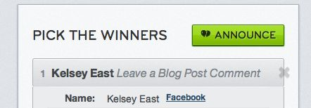 giveaway winner6 Roundup of December Giveaway Winners