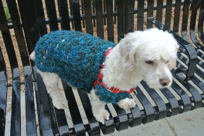 crochet sweater A New Crochet Doggie Sweater for Betty