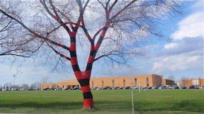 crochet tree cozy 400x225 Crochet Artist Carol Hummel