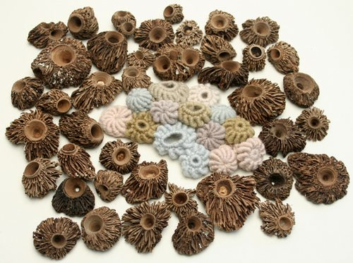Barnacles The Art of Helle Jorgensen (Gooseflesh)