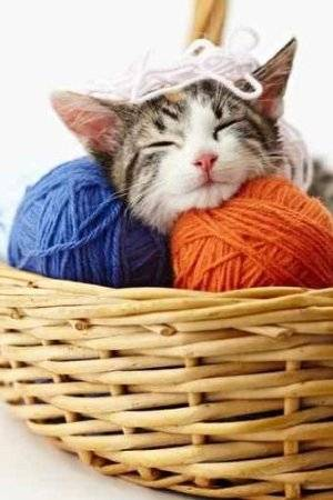cat yarn Then And Now: A Look Back at Last Year in Crochet (7/29   8/11)