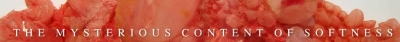 mysterious content of softness1 400x42 The Mysterious Content of Softness Art Exhibit
