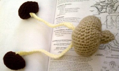 crochet kidney 400x239 Actress and Crochet Artist Sarah Louisa Burns