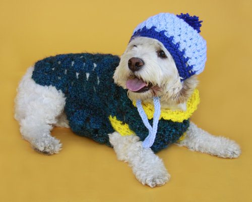 Post image for Betty in Blue (crochet for dogs)