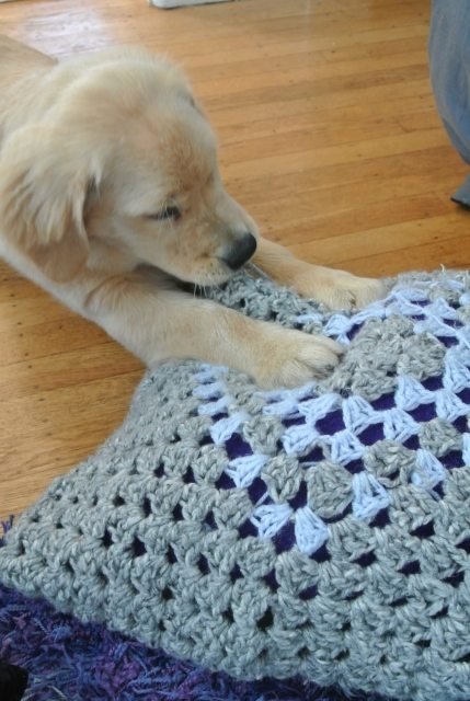 DSC 6665 Crochet Blog Roundup: May in Review