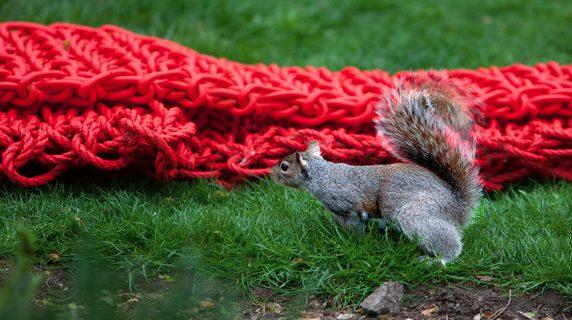 orly genger crochet rope art
