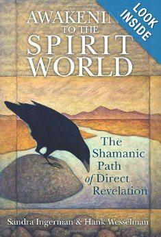 shaman spirit book