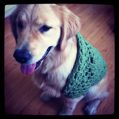 IMG 3037 400x400 instagram crochet