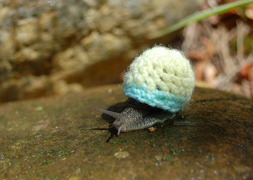 Post image for Crochet Snail Cover