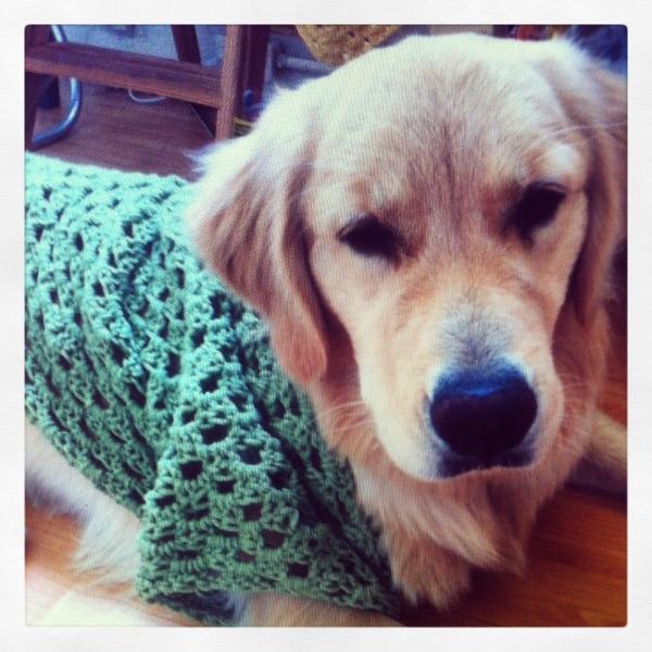 IMG 4135 600x600 Crochet Instagrammed