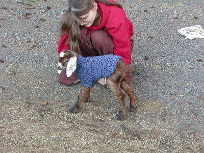 crochet goat