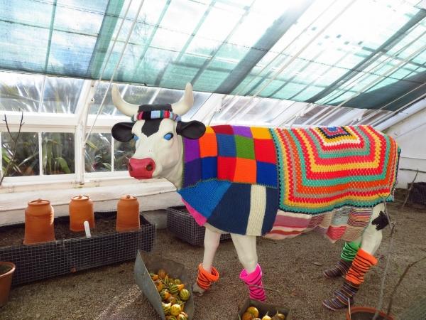 yarnbomb cow