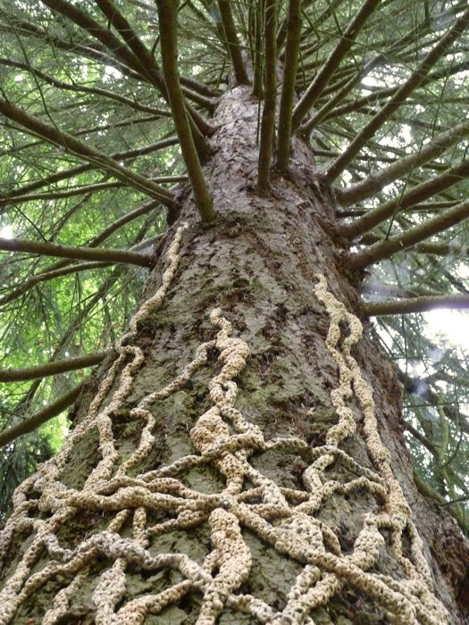 plarn crochet roots Nature Based Plarn Crochet Artist Barbara De Pirro