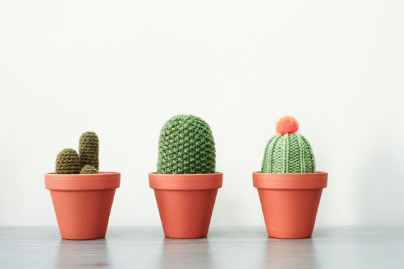 crochet cacti Craft and Crochet Maker Sarah Goldschadt