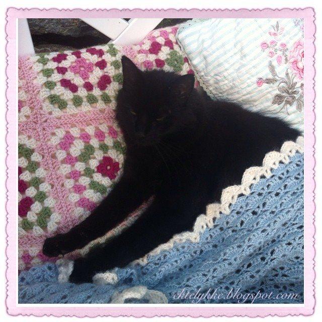 ektylkke crochet kitty