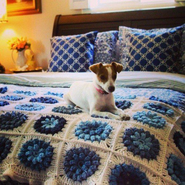 priscillablain instagram crochet blanket Crochet Instagrammed