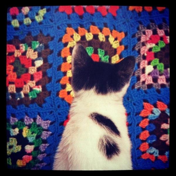 crochet ad vercillo instagram
