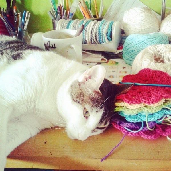 corazonalsol kitty crochet