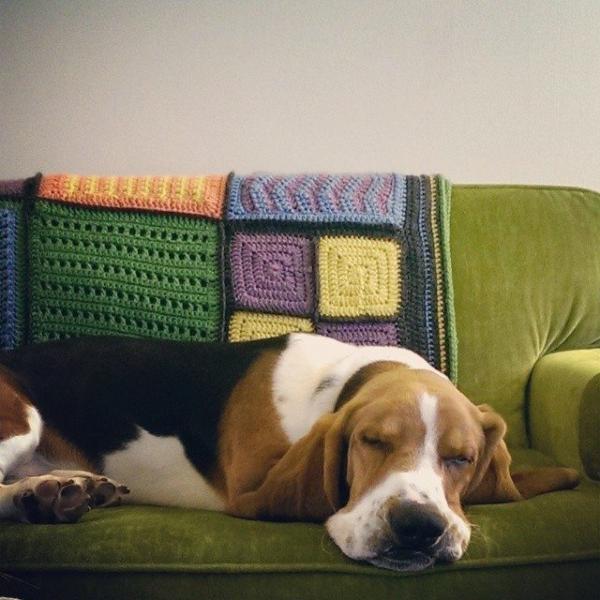 jillsneedbrown crochet blanket puppy