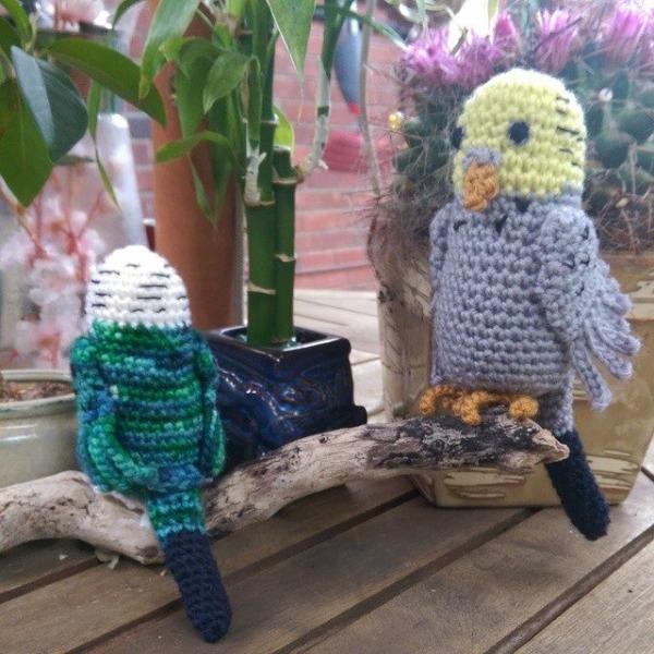 oakherder crochet budgies 2