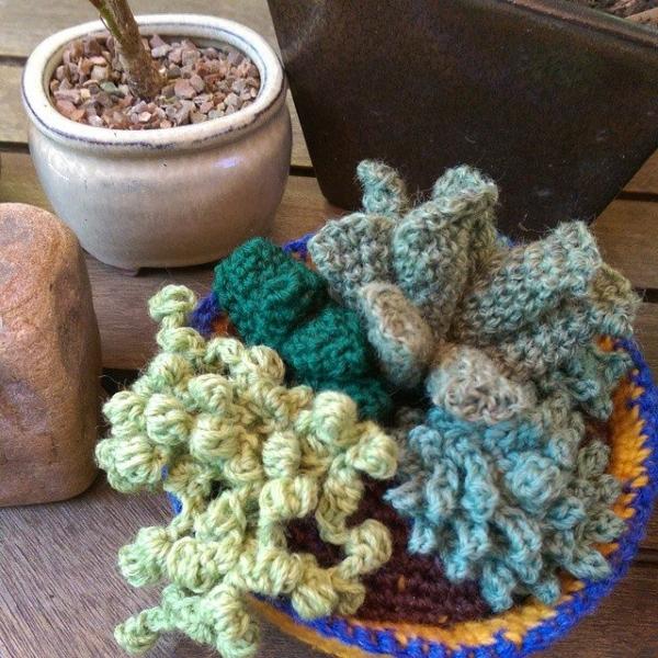 oakherder crochet succulents 2