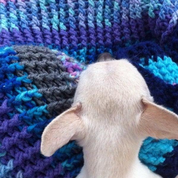 puppy on post stitch crochet