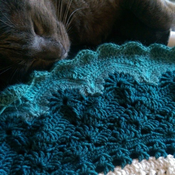 oakherder crochet with cat