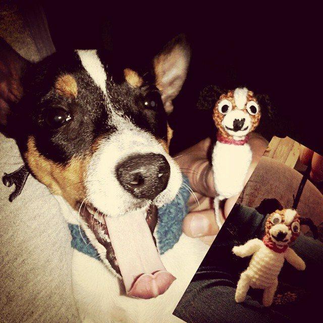 choontal crochet dog