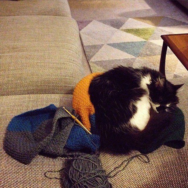 cozamundo crochet kitty