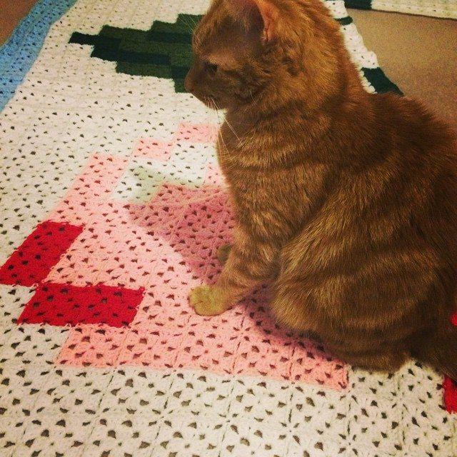 d0nna84 crochet kitty