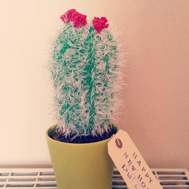 little_v_and_me crochet cactus