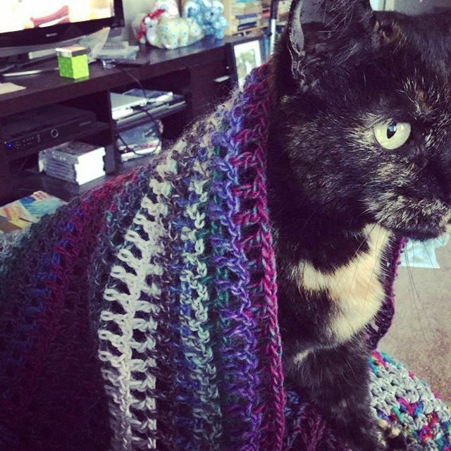 wrappedwithlovebymichlle crochet cat