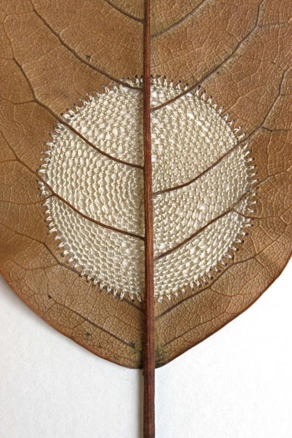 crochet circle leaf