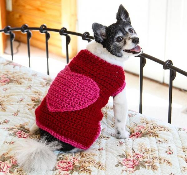 crochet dog heart sweater kit