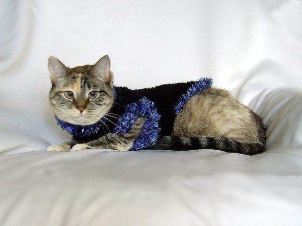 crochet kitty sweater pattern
