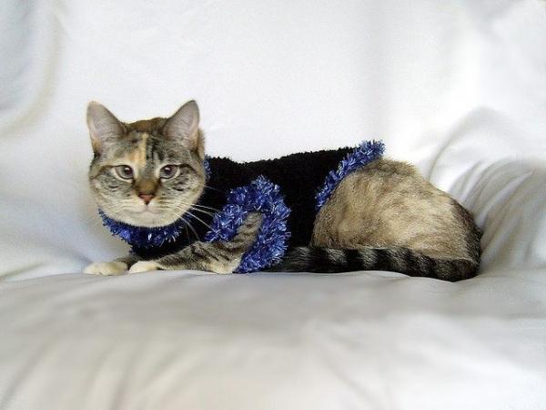 crochet kitty sweater pattern