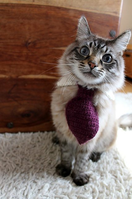 crochet pet tie