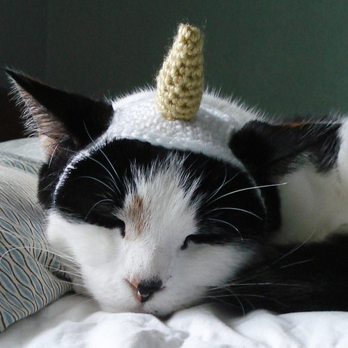 crochet unicorn hat costume for cat