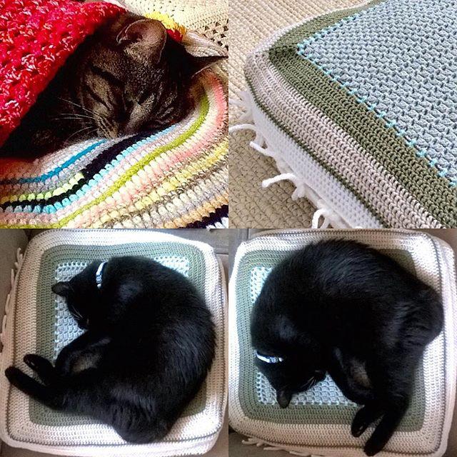 elisabethandree crochet kitty