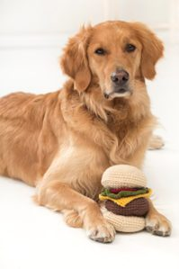 crochet cheeserburger pet toy free pattern