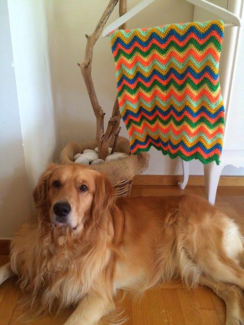 felgekleurde chevron gehaakte deken gratis patroon