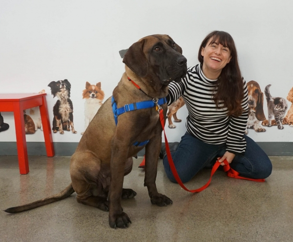 kathryn vercillo with rescue dog katara