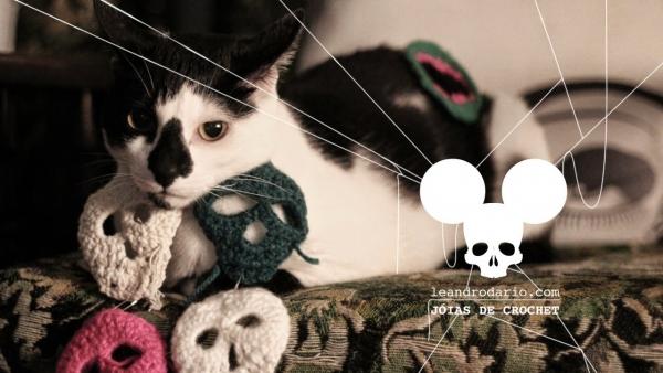 cat with crochet leandro dario