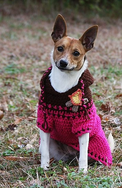 Free Crochet Patterns Dog Sweaters Large Dog : Crochet for Pets: 15 New FREE Animal Crochet Patterns