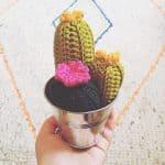 cactus crochet pattern