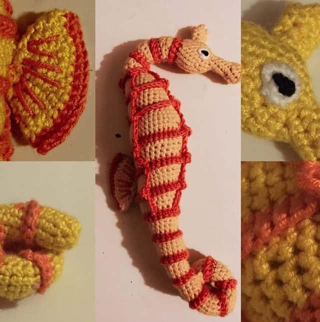 jeremy-cole-crochet-seahorse