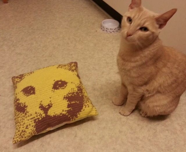 crochet cat pillow made with app