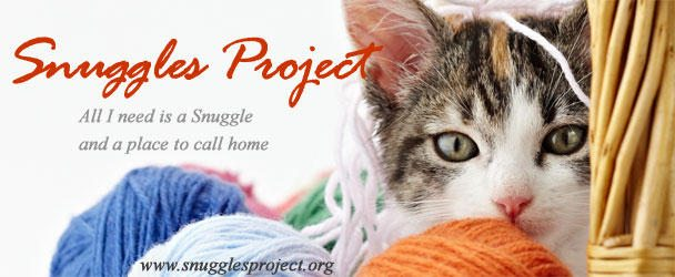 crochet for homeless animals
